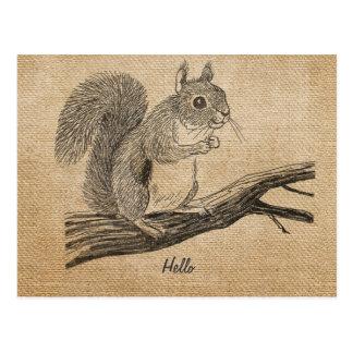 Burlap Vintage Squirrel Postcard