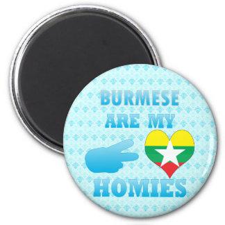 Burmas are my Homies 2 Inch Round Magnet