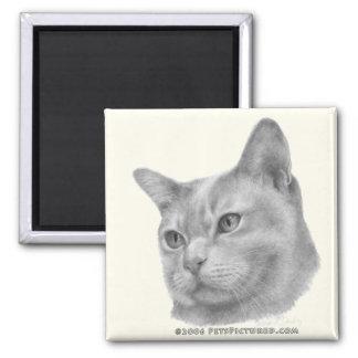 Burmese cat 2 inch square magnet