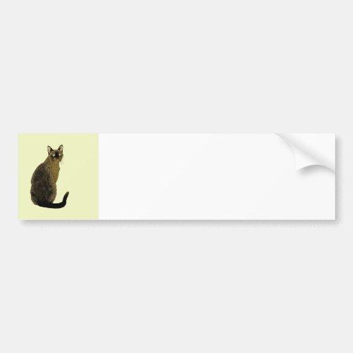 Burmese Cat Bumper Sticker
