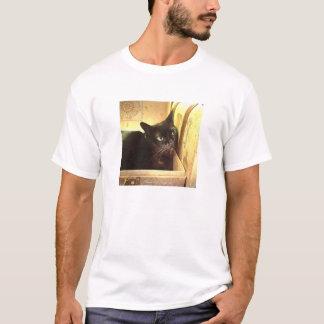Burmese Cat in Golden Antique Box, Series 1, Pose T-Shirt