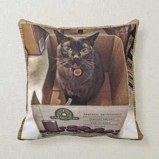 Burmese Cat in Juice Box Throw Pillow