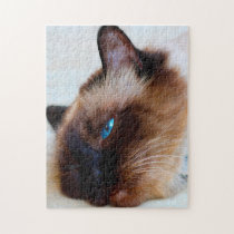 Burmese Cat. Jigsaw Puzzle