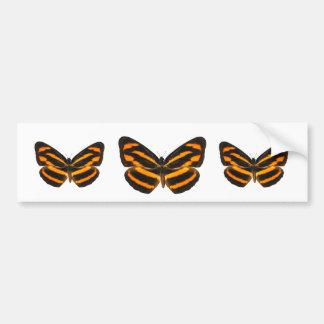 Burmese Lascar Butterfly Bumper Sticker