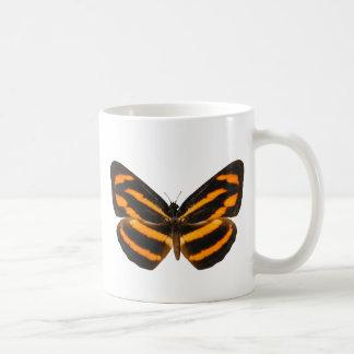 Burmese Lascar Butterfly Mug