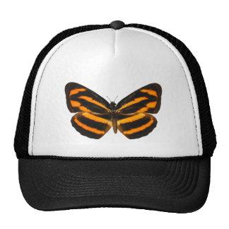 Burmese Lascar Butterfly Trucker Hat