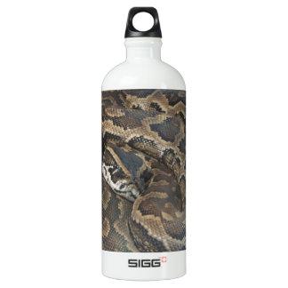 Burmese Python Aluminum Water Bottle