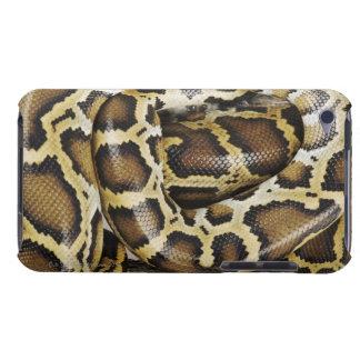 Burmese python barely there iPod cover