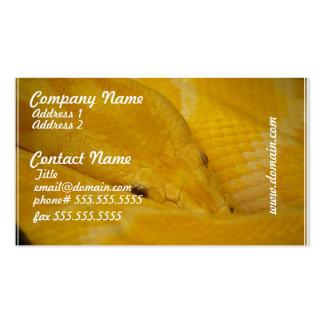 Burmese Python Business Card