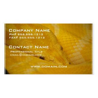 Burmese Python Business Card Templates