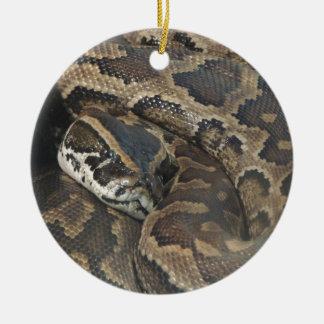 Burmese Python Ceramic Ornament