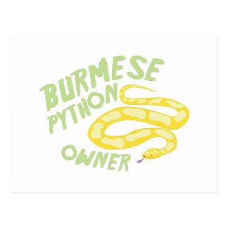 Burmese Python Owner Postcard