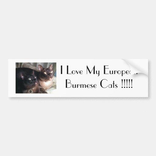 BurmeseDuo_18, I Love My European Burmese Cats ... Bumper Stickers
