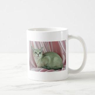 Burmilla, caramel shaded coffee mugs