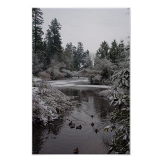 Burnaby s Central Park Half-frozen Lower Pond Poster