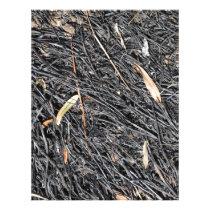 Burned Grass Letterhead