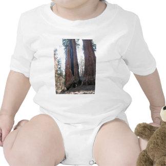 Burned Sequoia Baby Bodysuits