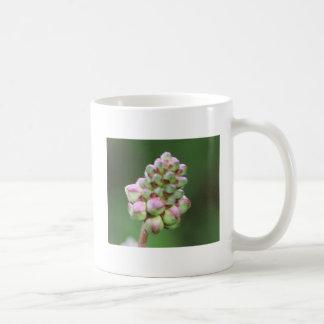 Burnet sulks classic white coffee mug