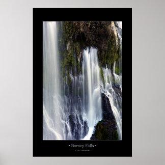 Burney Falls (Color) Print