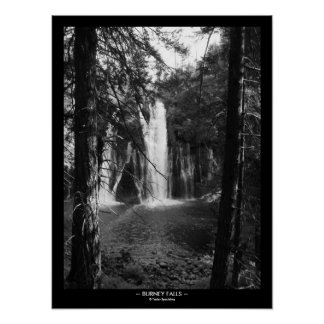 Burney Falls Through the Trees with Title Border Poster