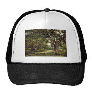 Burnham Beeches, London and suburbs, England rare Trucker Hats