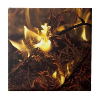 Burning Branches Ceramic Tile