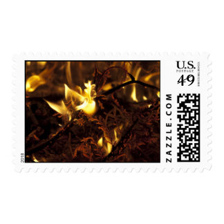 Burning Branches Postage Stamp