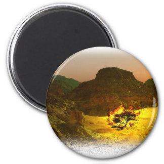 Burning Bush 1 Magnets