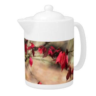 Burning Bush Autumn Foliage - Euonymus alatus Teapot