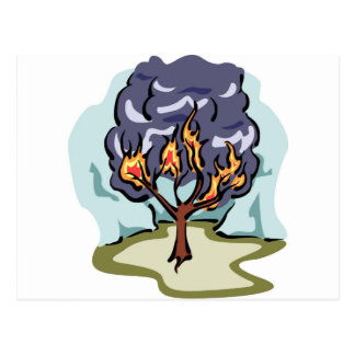 Burning Bush Christian artwork Post Card