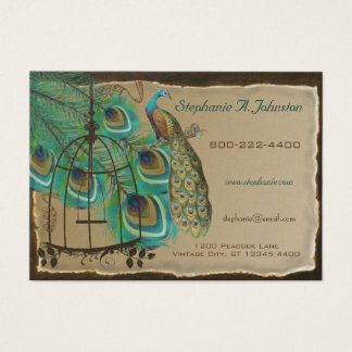 Burnt Edges Vintage Peacock Feathers Birdcage Business Card