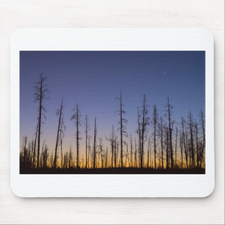 Burnt-Forest Mouse Pad