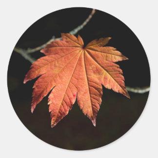 Burnt Orange Leaf Stickers