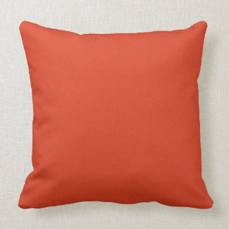 """Burnt Orange Two-Sided 20"""" Pillow"""