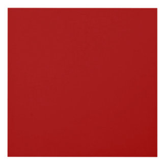 Burnt Red Solid Color Panel Wall Art