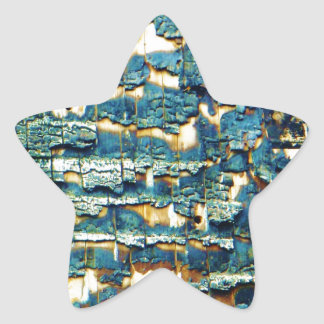 Burnt shingles star sticker