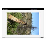 Burnt Trees At Griffith Park Decals For Laptops