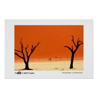 Burnt Trees - Photo of the Year Finalist Print