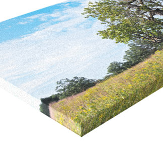 Burr Oak Trees and Prairie Canvas Print