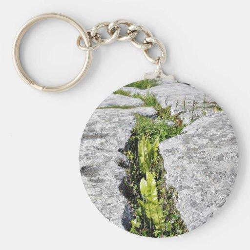 Burren Plants Limestone Rocks Keychain