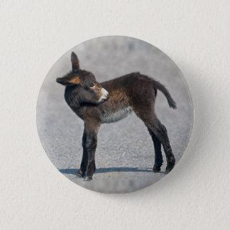 Burro Badge Pinback Button