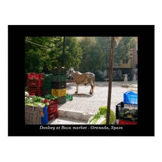 Burro en el mercado de Baza - Granada, España Tarjetas Postales