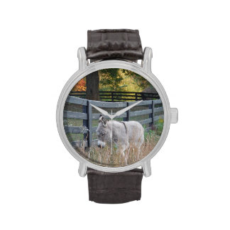 Burro en un campo del otoño relojes de mano
