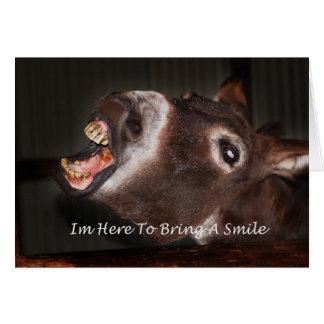 Burro estoy aquí traer una sonrisa tarjeta de felicitación