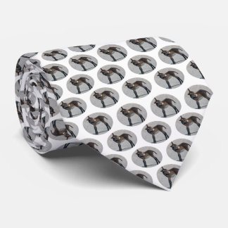 Burro Frenzy (Choose Colour) Neck Tie