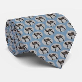 Burro Frenzy Tie (Sky Blue)