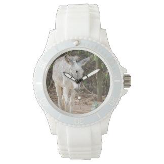 Burro gris reloj