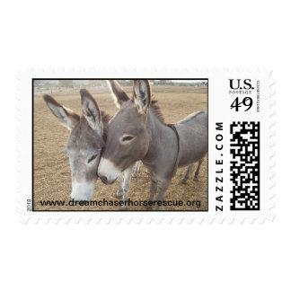 Burro Love Postage Stamp
