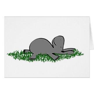 burro napping tarjetas