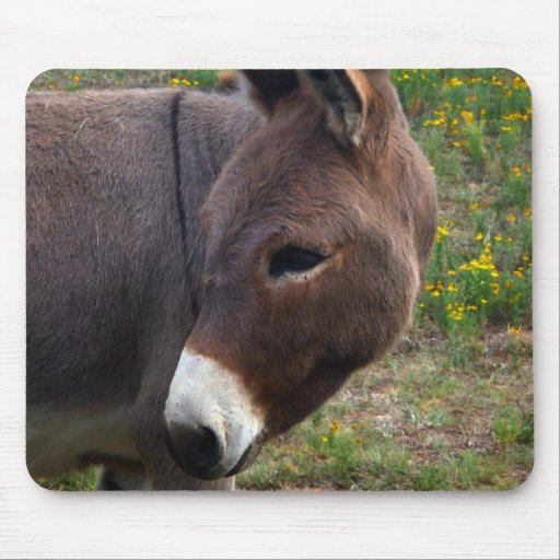 burro pad mousepads
